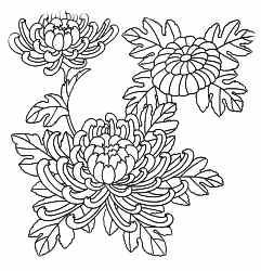 Irezumi Symbology Art Tattoo Studio