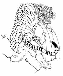 tiger tiger burning bright meaning
